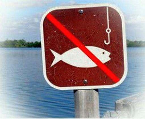 Ловить рыбу запрещено