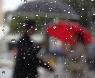 Погода в Харькове: тепло, но дождливо