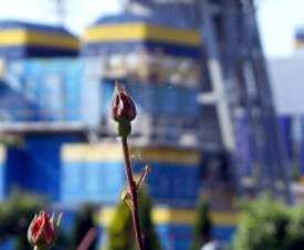 Украина уже 500 дней не импортирует газ из России