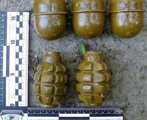 В Чугуеве возле школы задержали военного с гранатами