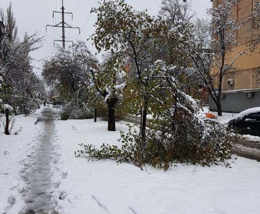 Погода в Харькове не является аномальной: синоптики