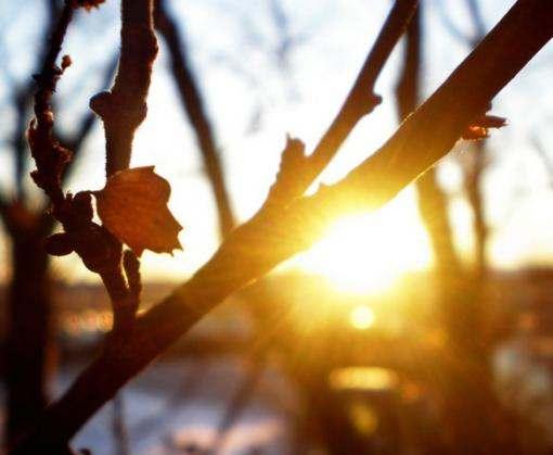Погода в Харькове: холода отступают