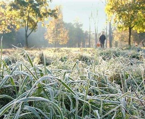 Погода в Украине: снова похолодает