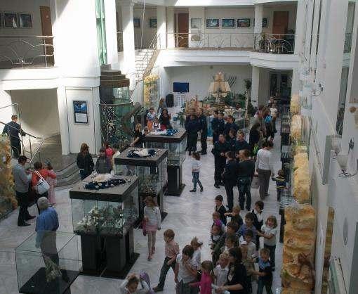 «Ночь музеев»: Галерея «АВЭК» и Фельдман Экопарк подготовили грандиозный шоу-ивент