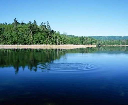 В харьковском озере нашли утопленника
