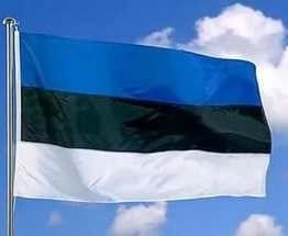 Эстония откроет первое в мире виртуальное посольство