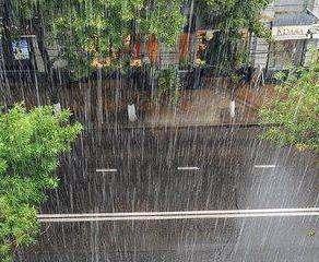Погода в Харькове: временами гроза
