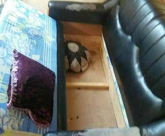 В Харькове нашли вора в диване