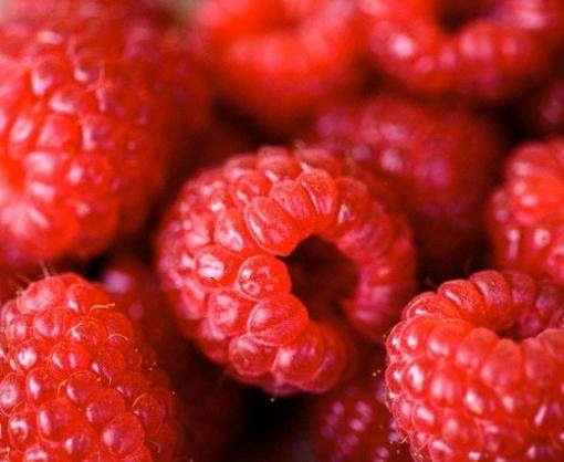 На украинских рынках дешевеет малина