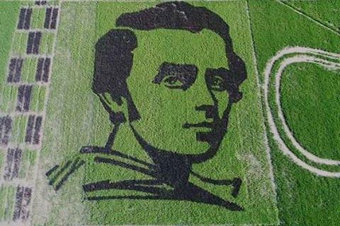 В Херсонской области на рисовом поле вырастили портрет Тараса Шевченко
