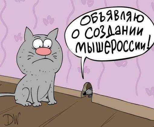 «Малороссия-17» закончит так же, как и «Новороссия-14»