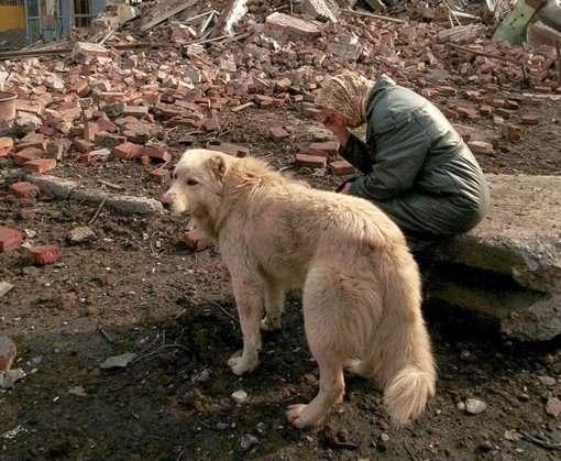С начала года в Донбассе погибли 59 гражданских