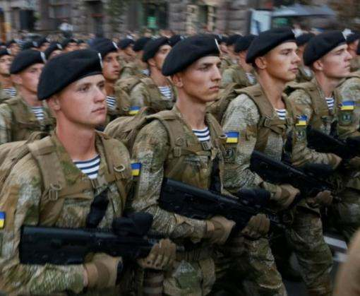 Украинские морпехи примут участие в учениях Noble Partner-2017 в Грузии