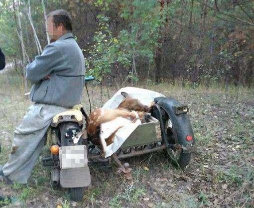 В Харьковской области задержаны браконьеры на мотоцикле
