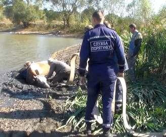 Спасатели вытащили из болота человека и корову