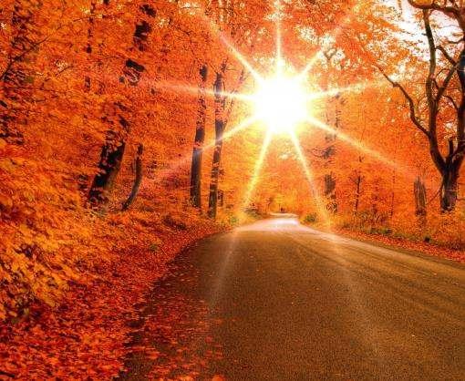 Как побороть хандру: пять правил счастливой осени