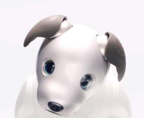 Sony создала робота-собаку с OLED-глазами: видео
