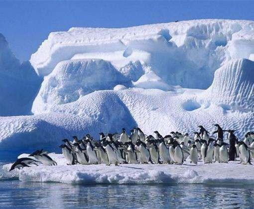 Ученые узнали причину разрушения гигантского ледника в Антарктиде