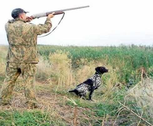 Под Харьковом открыли сезон охоты