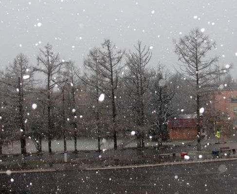 Погода в Харькове: наступают морозные дни