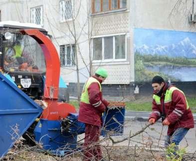 В Харькове продолжают рубить деревья