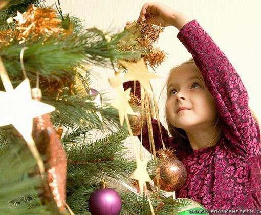 Харьковчанам в этом году предложат 66 тысяч новогодних елок