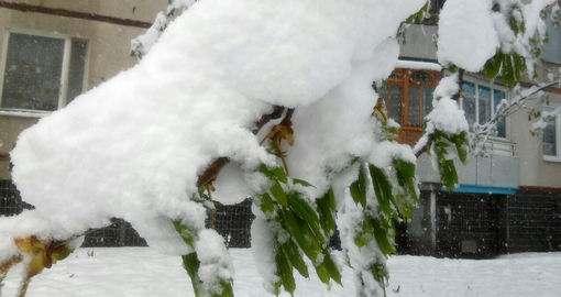 В Харькове продолжается зима среди весны: фоторепортаж