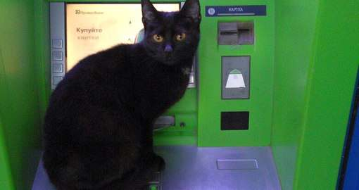«Странными» банкоматами в Харькове лучше не пользоваться
