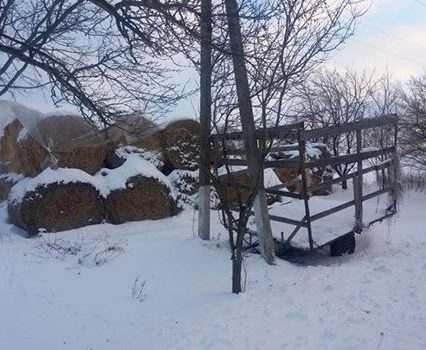 На Харьковщине мать-кукушка оставила младенца на морозе