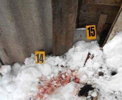 На Харьковщине сын зверски убил мать: фото-факт