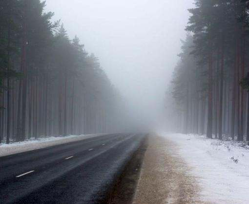 Погода в Харькове в праздничные дни