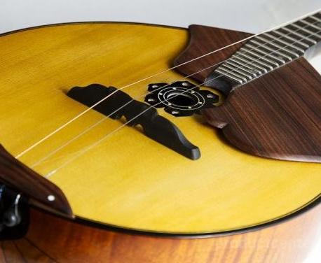 В Харькове соберутся знатоки народных музыкальных инструментов