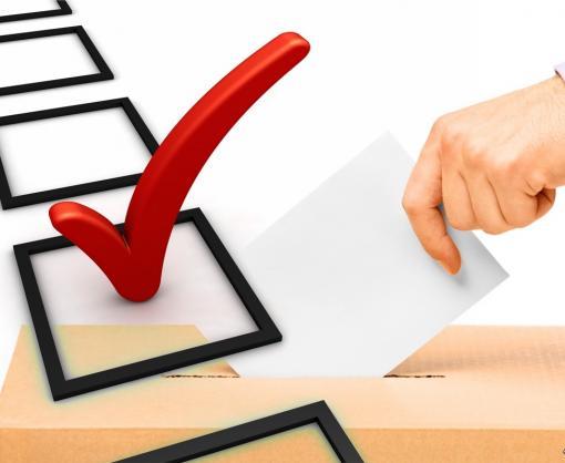 Долой гречку и кандидатов-двойников: МВД предлагает ужесточить наказание за нарушения на выборах