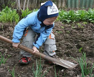 Даже в выборе лопаты есть свои хитрости