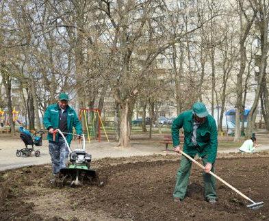 В Харькове благоустраивают парк на Волонтерской
