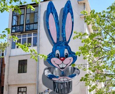 В Харькове появился британский кролик