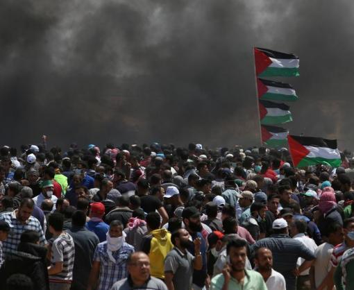 Массовые протесты в Палестине: число погибших возросло до 58 человек