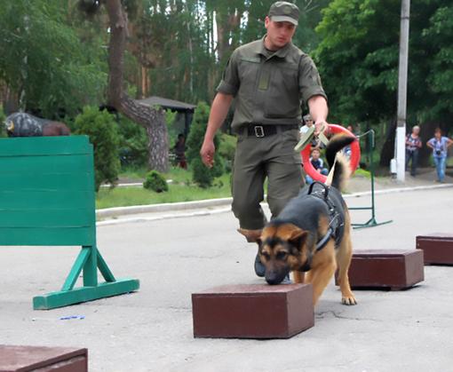 Харьковскую зооветакадемию посетили кинологи Слобожанской бригады: фото-факты