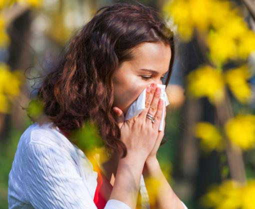 На стыке весны и лета: аллергия в период цветения