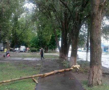 По Лозовой пронесся ураган: фото-факты