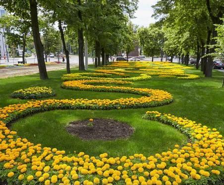 На проспекте Независимости обновили клумбу тюльпанов