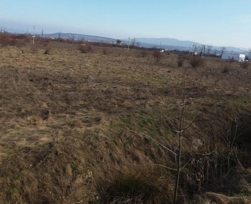 «Дерибан» под Харьковом: прокуратура занялась возвратом земли