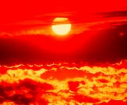 Погода в Харькове: тепло и влажно