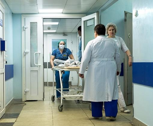Осторожно - грибы: в Одесской области от отравления скончались ребенок и его беременная мать