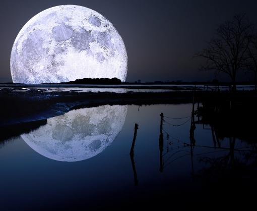 Ученые обнаружили признаки жизни на Луне