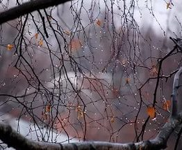 Погода в Украине: когда прекратятся дожди