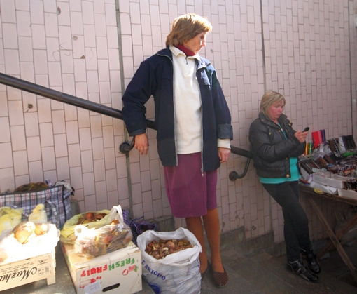 Харьковчане стали травиться безобидными сыроежками