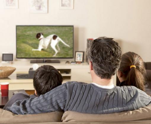 Некоторые аналоговые каналы не умрут после перехода на цифровое ТВ