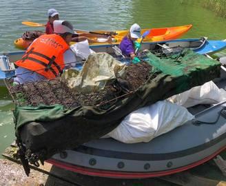 Диван, шуба и огородное чучело: какие «артефакты» волонтеры нашли в реке