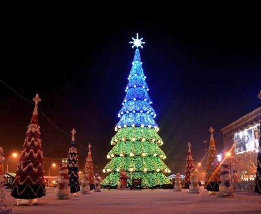 В Харькове будет новая новогодняя елка